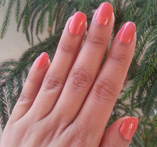 maybelline color show coral craze