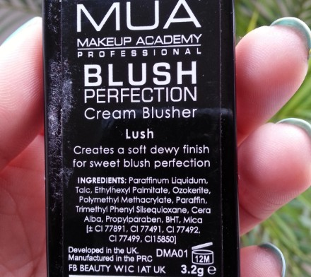 mua perfection blush lush 1