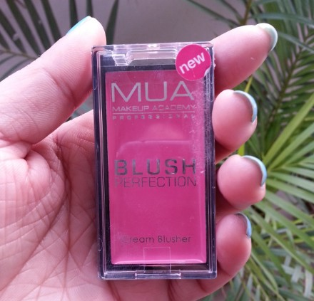 mua perfection blush lush