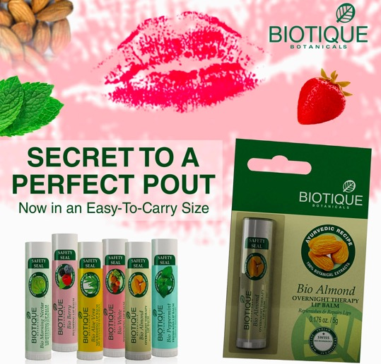 biotique lip balm price